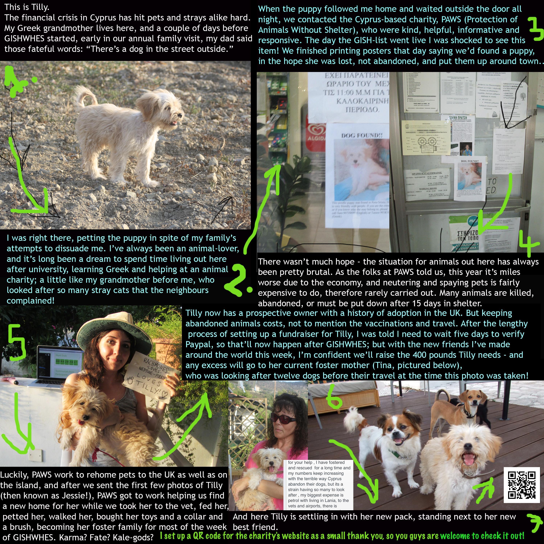 Item 61 - Pet Adoption Flyer